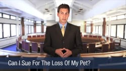 Can I Sue For The Loss Of My Pet