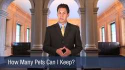 How Many Pets Can I Keep