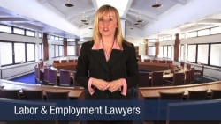 Labor & Employment Lawyers