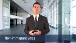 Non-Immigrant Visas
