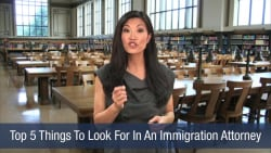Top 5 Things To Look For In An Immigration Attorney