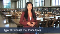 Typical Criminal Trial Procedures