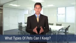 What Types Of Pets Can I Keep