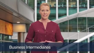Video Business Intermediaries