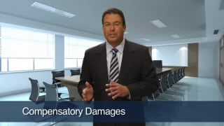 Video Compensatory Damages