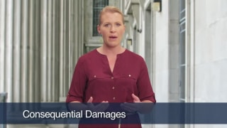 Video Consequential Damages