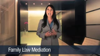 Video Family Law Mediation