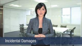 Video Incidental Damages