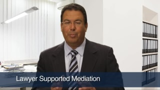 Video Lawyer Supported Mediation