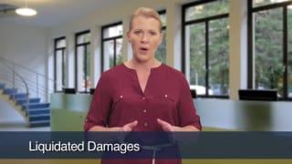 Video Liquidated Damages