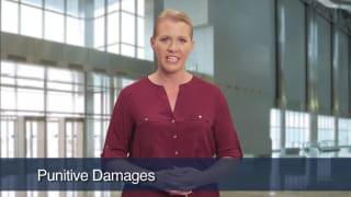 Video Punitive Damages