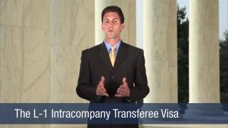 Video The L-1 Intracompany Transferee Visa